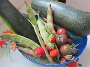 Hortalizas cosechas en Huertos del Túria