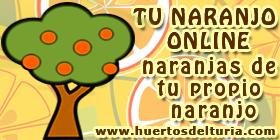 Tu Naranjo Online en Huertos del Túria, Valencia